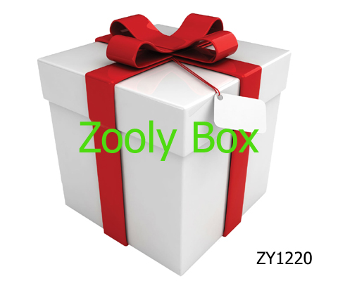 White Paper Box With Lid Zooly Box